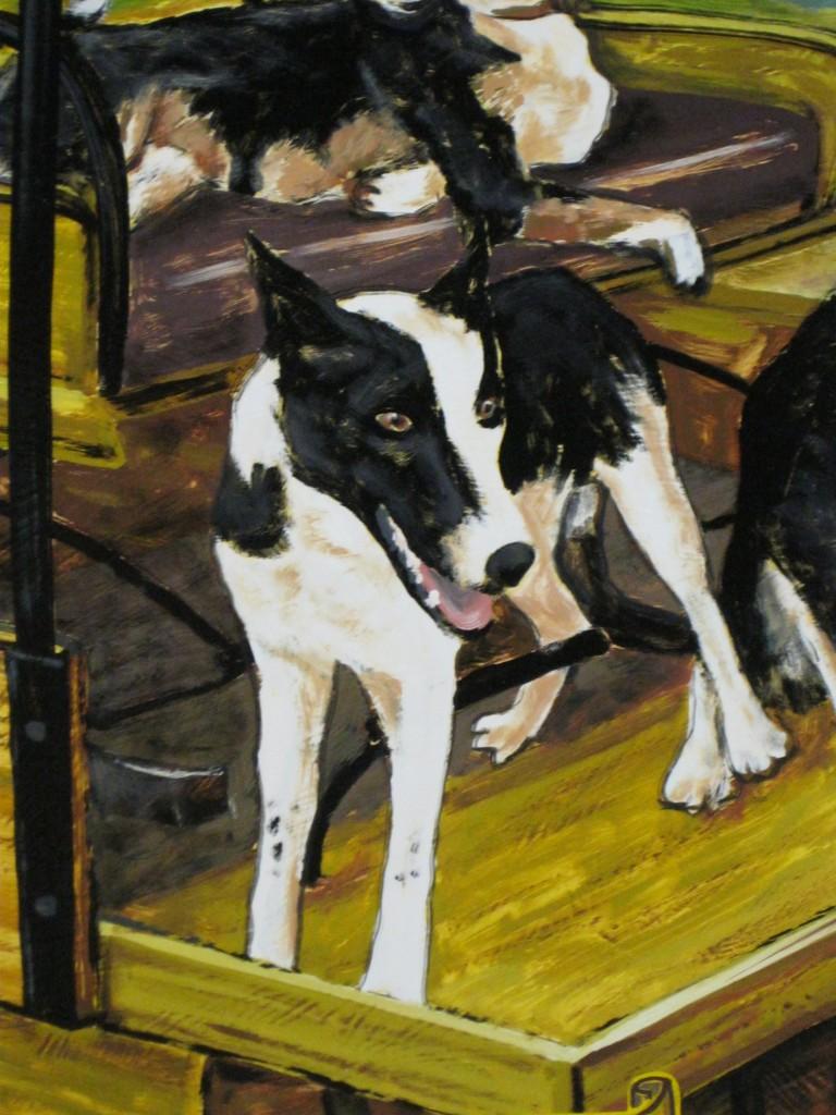 Zaunbrecher Cattle Dogs Cash