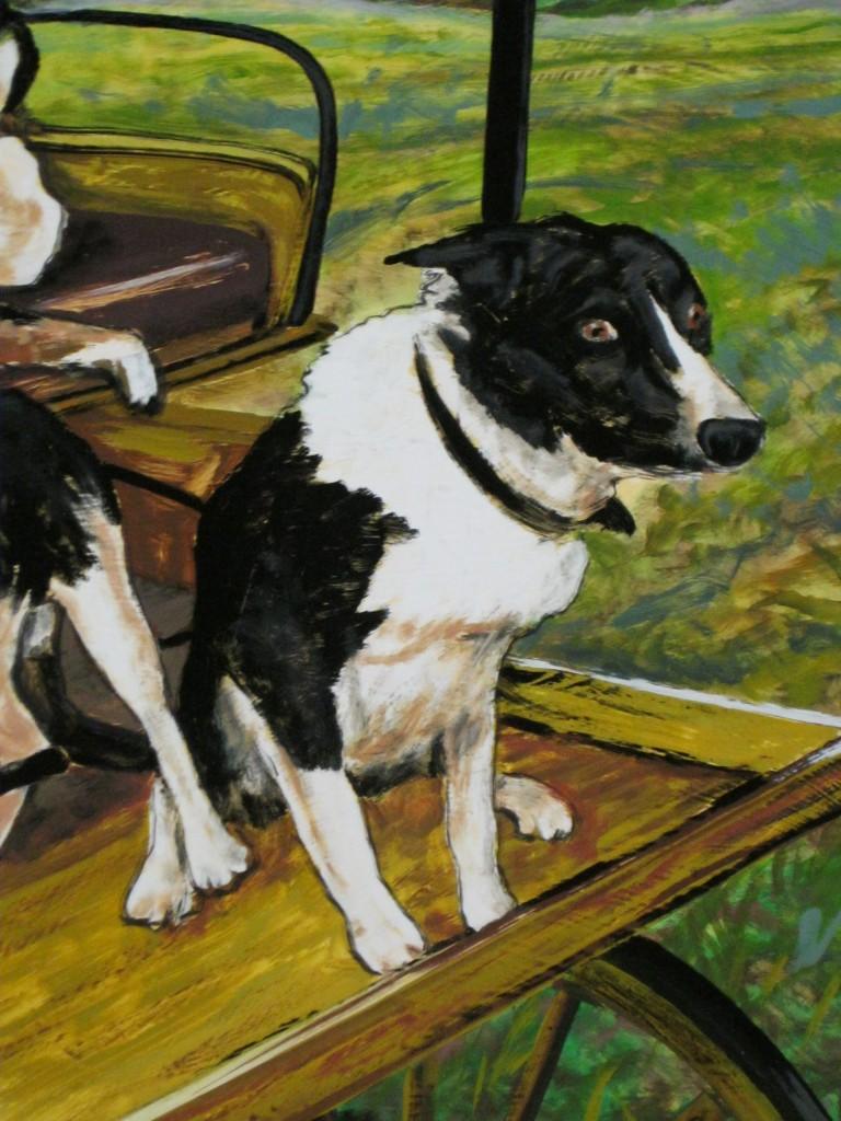 Zaunbrecher Cattle Dogs Ted