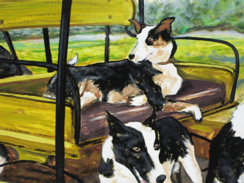 Zaunbrecher Cattle Dogs Zoe